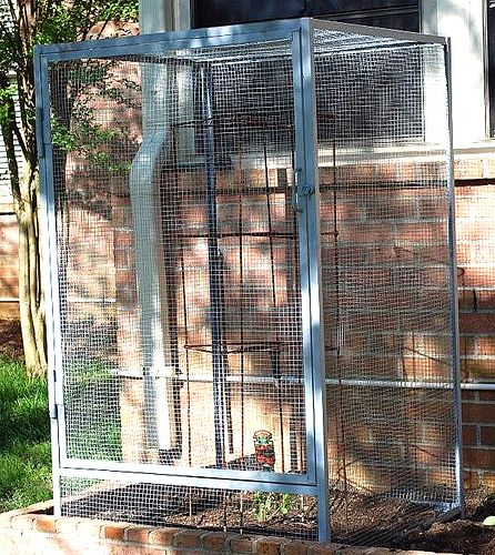 Squirrel Bird Proof Garden Cage Gardening Pinterest