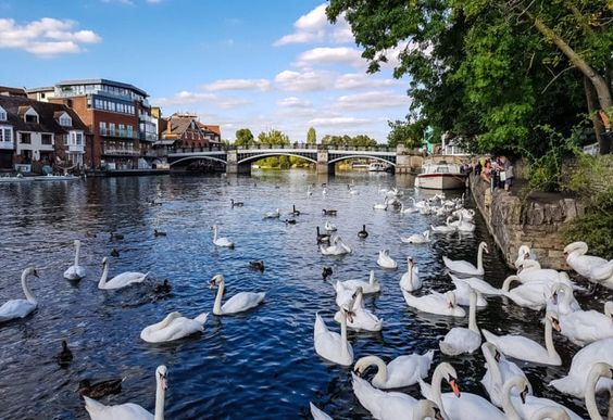 15 Best Things to Do in Maidenhead (Berkshire, England) - The Crazy Tourist