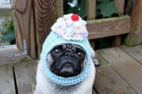 cupcake hat...