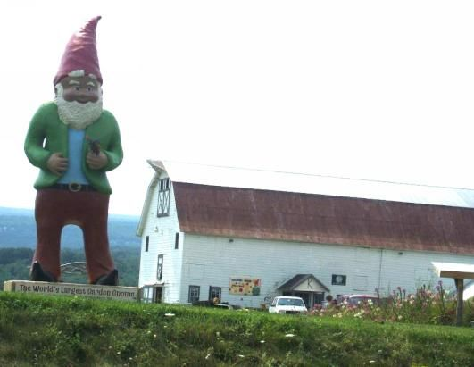 Gnome In Garden: Garden Gnomes, Worlds Largest And Gnomes On Pinterest