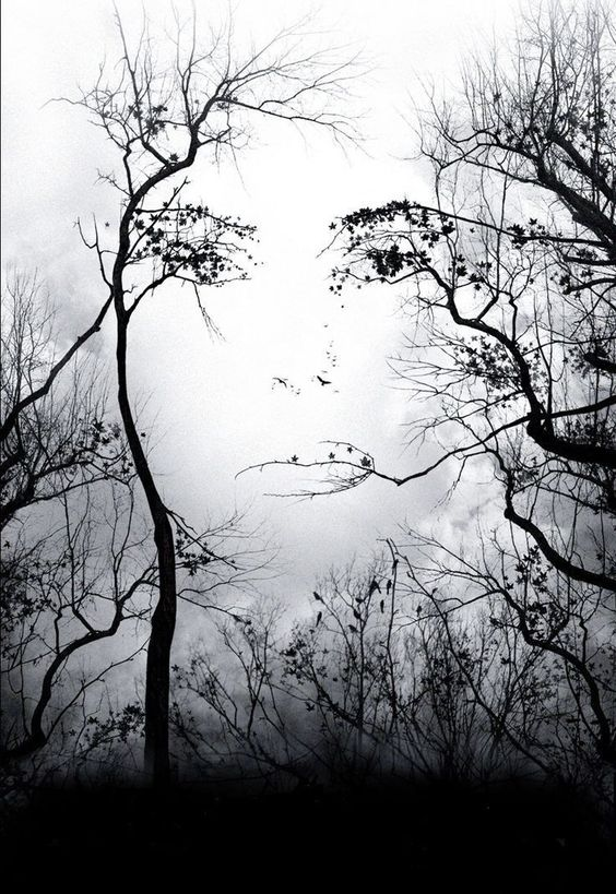 00280 Premonition Movie Poster Image Tree Face Poster Print