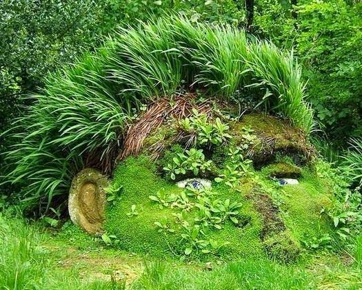 Naturaleza#