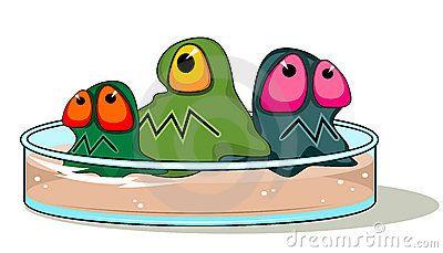 Placa de Petri com germes