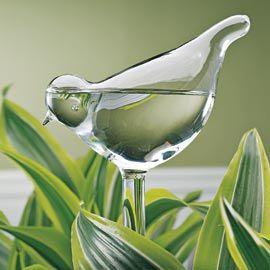 bird plant feeder