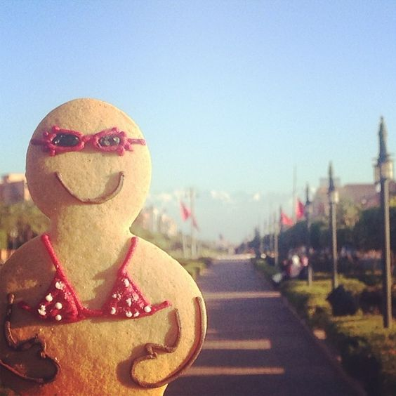 Dotty Ginger is enjoying the sunshine in Marrakech, Morocco.