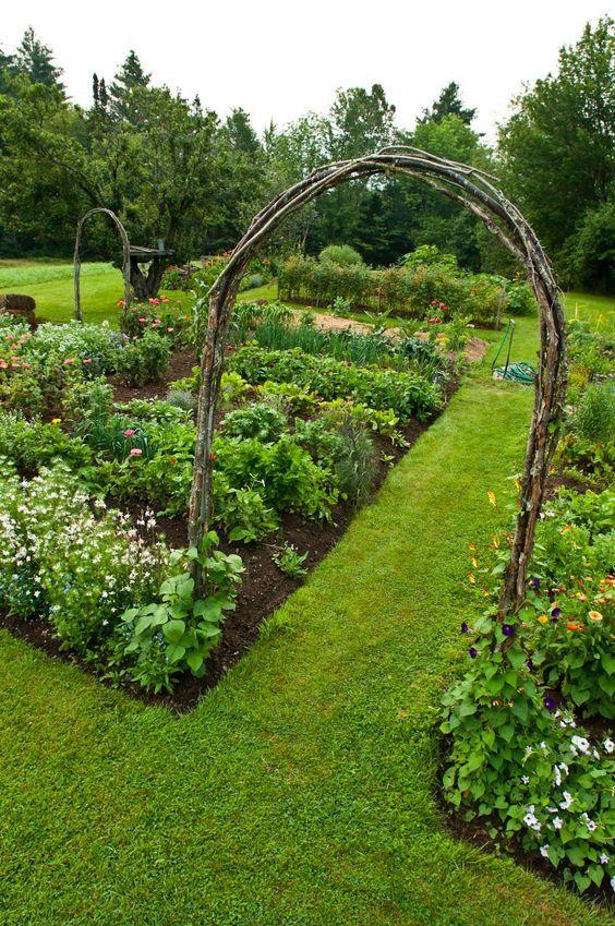 Köksträdgård med prydliga rabatter