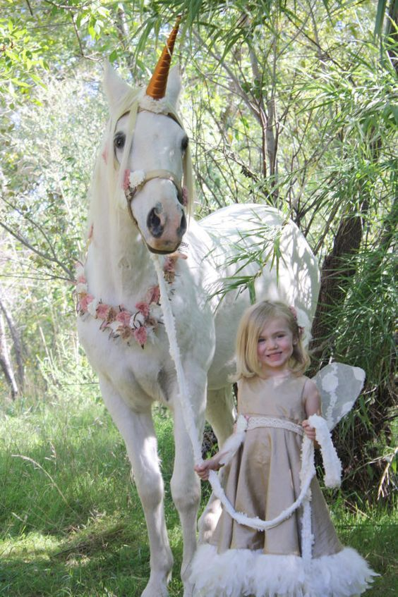 If you're looking for some inspiration for your Halloween horse show, be sure to check out these 25 awesome horse Halloween costumes.: