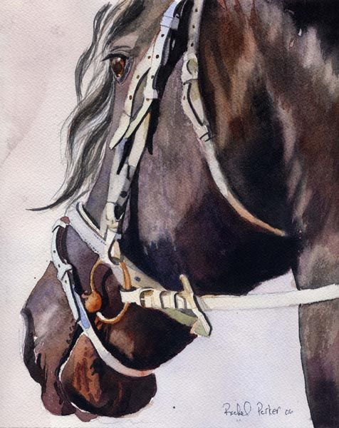 Giclée on Canvas Watercolor Painting Friesian Horse Art | eBay