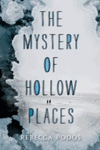 A mystery writer's daughter sets out to find her missing father and, along the way, begins to understand the loneliness that has gripped them both since her mother abandoned them years before.