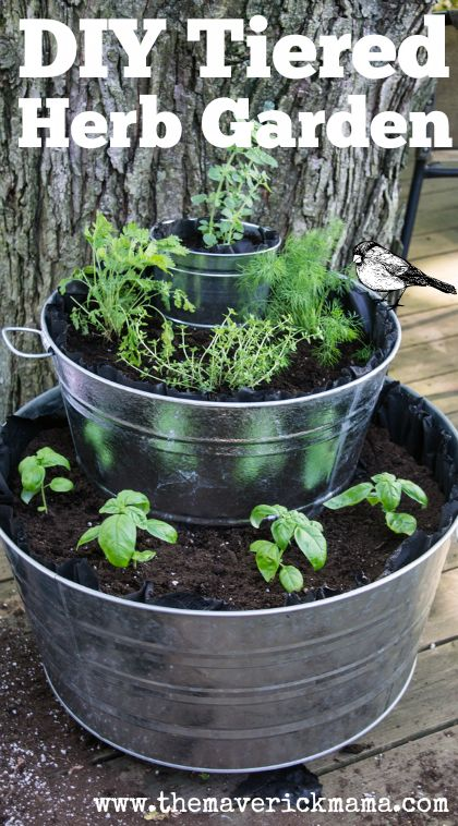Build a Tiered Herb Garden in Galvanized Tubs: