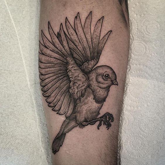 Loved doing this. Robin bird on forearm. Thankyou again Sotos. Always a pleasure!