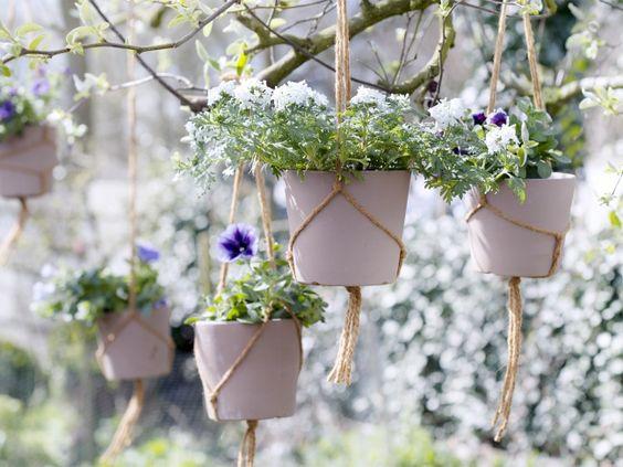 Hangende Garten Hangender Garten Garten Sommergarten