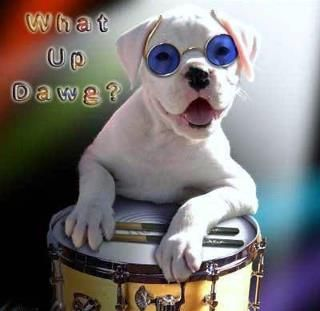 What Up Dawg???