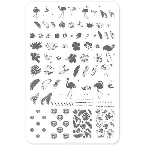 Clear Jelly Stamper- Fabulous Flamingo (CjS 57)