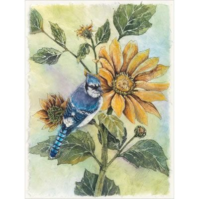 Sunflower Bluejay by Bucilla - Cross Stitch Kits & Patterns