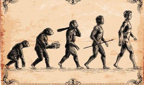 evolution, charles darwin, origin of speciies, herbert spencer, red, science of kissing,