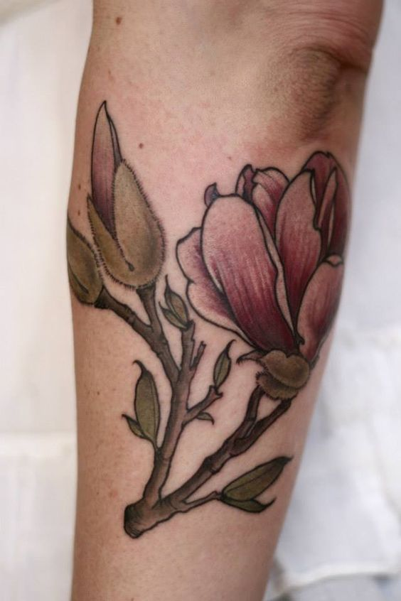 magnolia by alice carrier