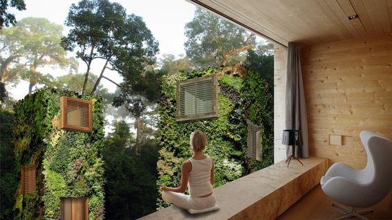 Ein Designer aus den Niederlanden will, dass wir in Bäumen wohnen   WIRED Germany
