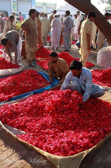 Roses - Flower bazaar in Lahore, Pakistan by Nadeem Khawar.