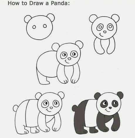 Aprende A Dibujar Un Oso Panda Facil Y Sencillo Como Dibujar Un Oso Aprender A Dibujar Dibujo Paso A Paso