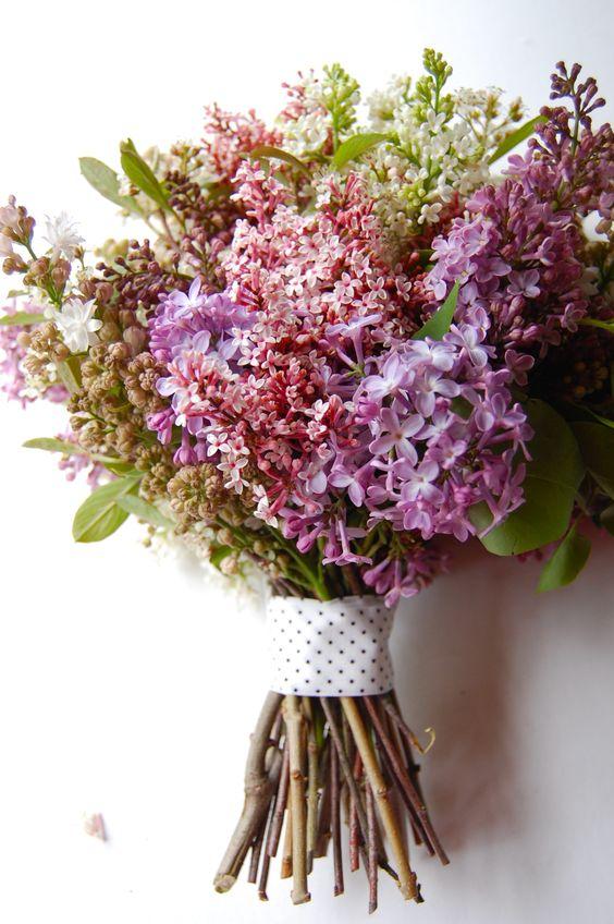 lilacs: Lilac Bouquet