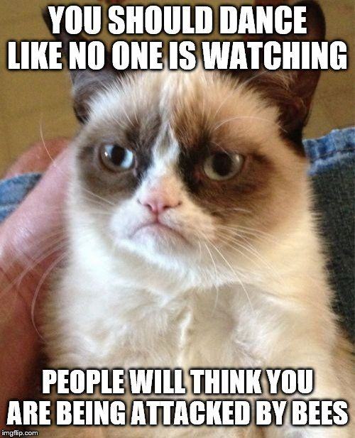 Grumpy Cat in 2020 | Funny grumpy cat memes, Grumpy cat christmas