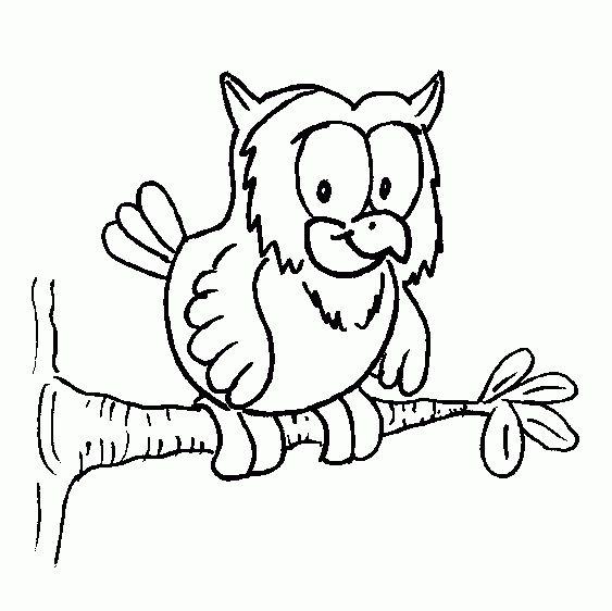 Ten Besser Malvorlage Eule Auffassung 2020 Vogel Malvorlagen Malvorlagen Tiere Malvorlage Eule