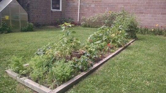 Our Montessori garden!   Montessori Garden   Pinterest   Gardens