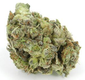 ATMOSPHERE #Indica #Marijuana #Strain #Reviews #Pictures #w33daddict