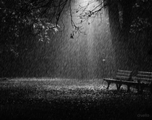 Falling rain. Lovely.