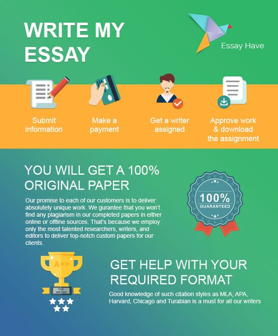 Where can i type my essay online