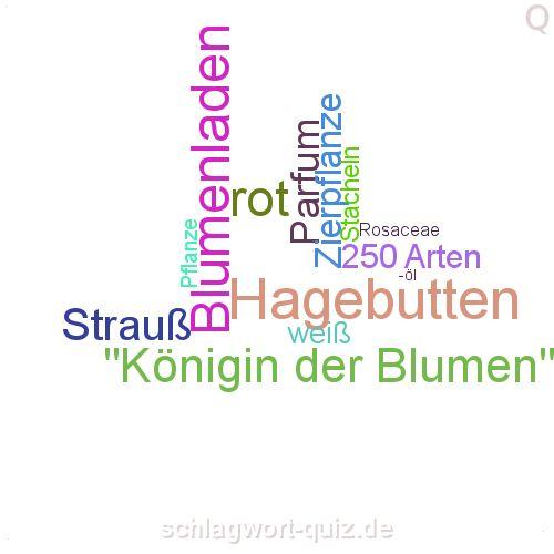 Welche Pflanze suchen wir? Lösung: http://schlagwort-quiz.de/raetsel/103