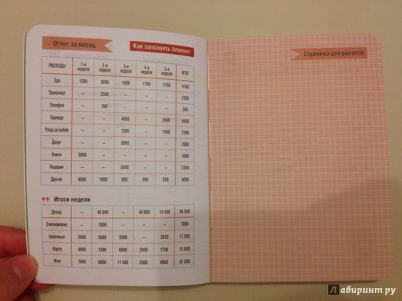 Иллюстрация 4 из 9 для CashBook. Мои доходы и расходы, А6 | Лабиринт - канцтовы. Источник: Агеева  Мария