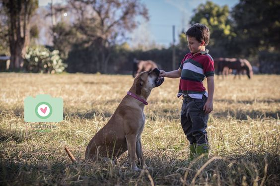 Entrenamiento   Cata Rojas Fotografía/ fotografía familiar  Facebook/Cata Rojas Fotografía