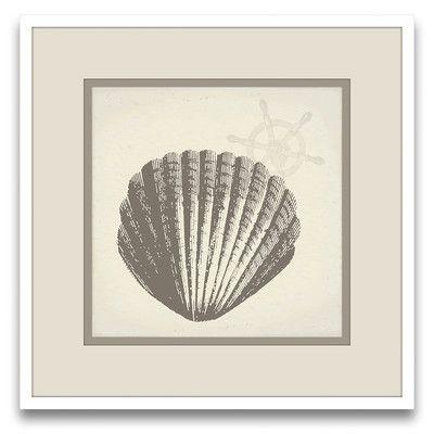 Epic Art Cousteau's Sketchpad Tina's Shells III Wall Art | Wayfair