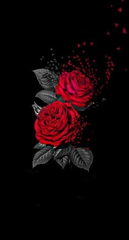 54 Trendy Flowers Red Art Nature Black Wallpaper Iphone Dark Rose Wallpaper Red Roses Wallpaper