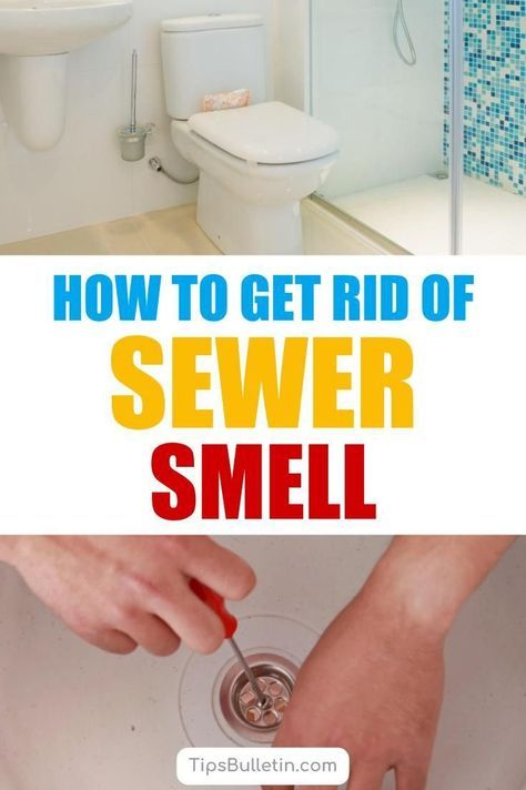 How To Get Rid Of Sewer Smell In Your House From Basements Smelly Drain Bathroom Cleaning Smelly Bathroom