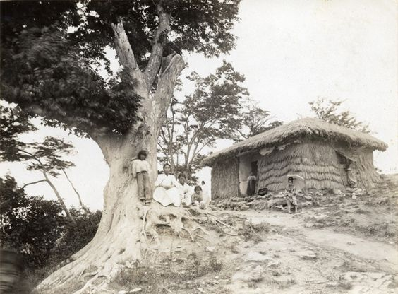 Grass house on a hill. Early Japanese Colonial Period postcard art/photography.