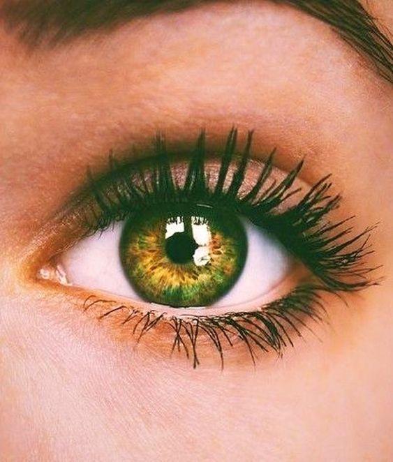 Mascara + Bronze Eyelid