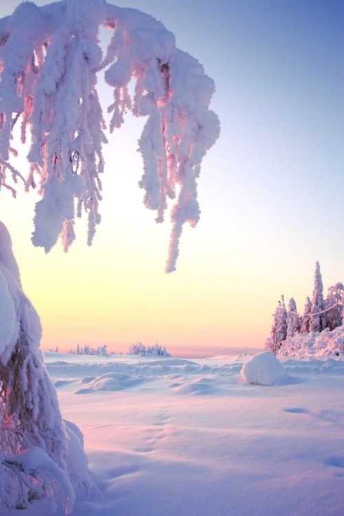 Sunrise on the snow: