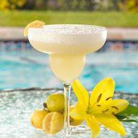 Guave Margaritas serves 12 and will make any Texas evening muy bien!: Guave Margarita, Kitchen Sink, White Wine, Guava Margarita