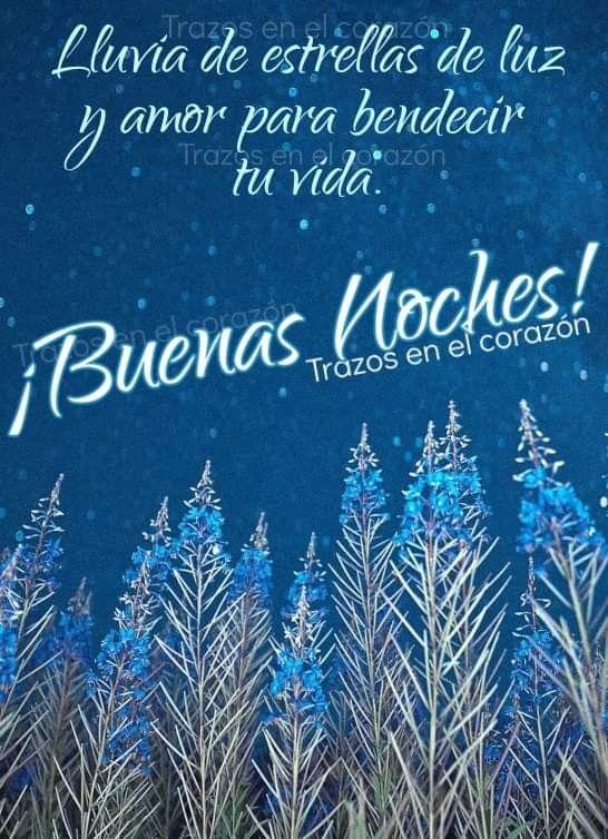 Pin De Nuria Lázaro En Buenas Noches Frases Lindas De Buenas Noches Buenas Noches Noche