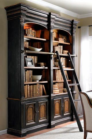 Awesome I Love Bookcases With Ladders Need It Customized Tho For The Largest Home Design Picture Inspirations Pitcheantrous