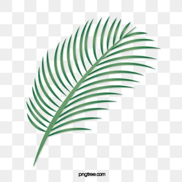 Tropical Leaves Rainforest Green Leaf Plant Green Illustration Plant Clipart Leaf Green Plant Png Transparent Clipart Image And Psd File For Free Download Warna Kertas Dinding