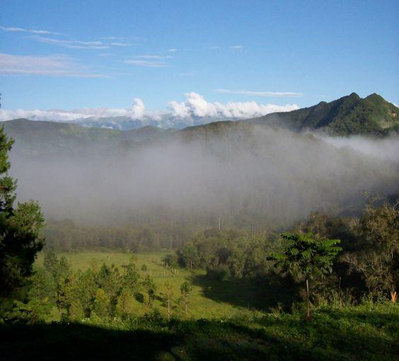 Antiquanatura - Las Yungas : el rostro verde de Jujuy - Noroeste de Argentina