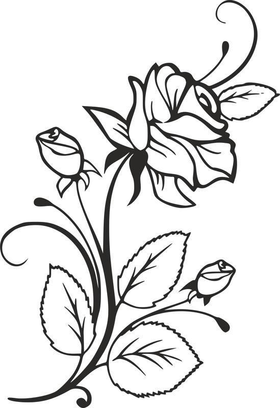 Rose Und Rosebuds Schone Schaum Auf Gefulltem Bierglas Vorlage Free Dxf File Free Download Mehr In 2020 Flower Drawing Coloring Pages Stencils