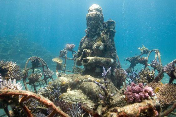 Coral Goddess By Dray Van Beeck Jpg Underwater Art Art Of Living Marine