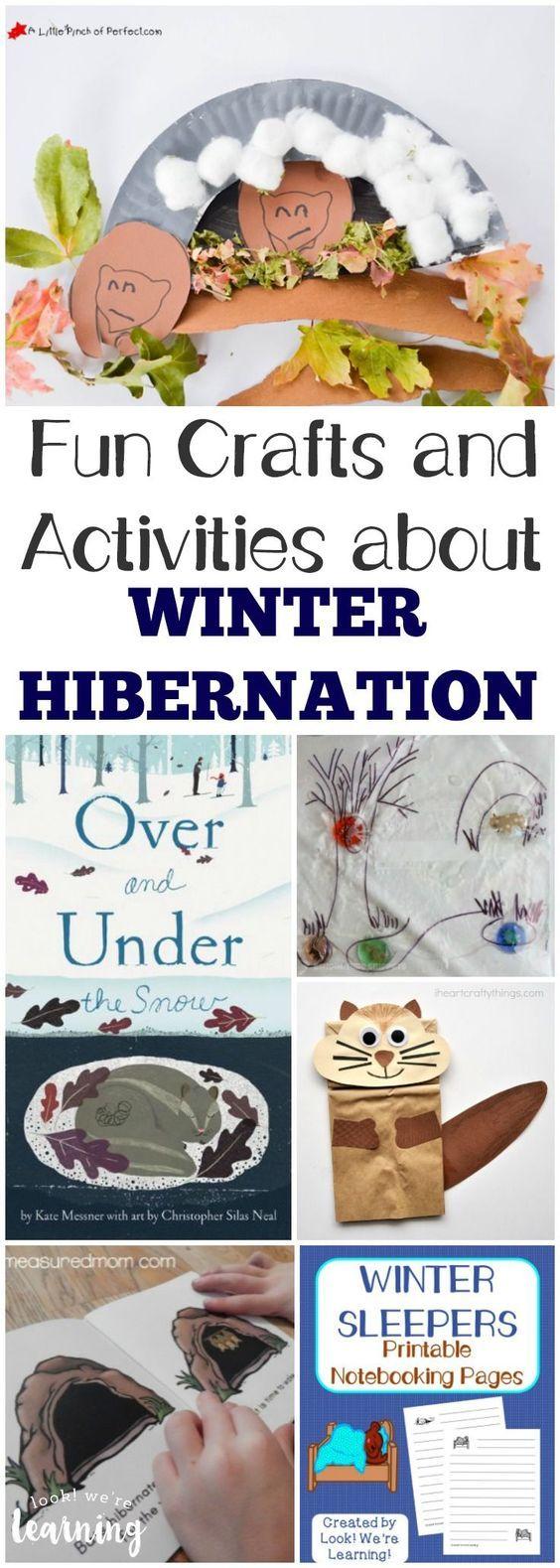 Fun Activities About Hibernation For Kids Hibernation Crafts Winter Activities For Kids Winter Crafts Preschool [ 1579 x 564 Pixel ]
