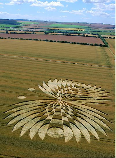 Círculos en los cultivos 619dc861b762816a2e130a436eeaba5d