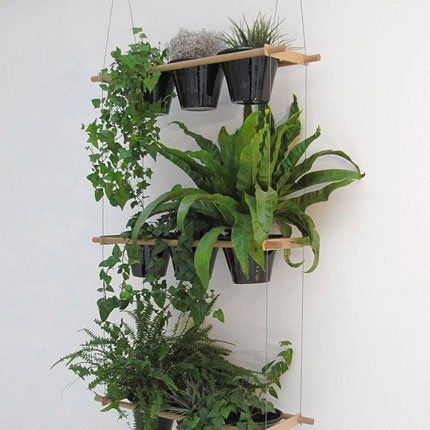 Pinterest the world s catalog of ideas for Mur vegetal suspendu